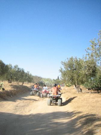 Hotel Samara: quad bike ride