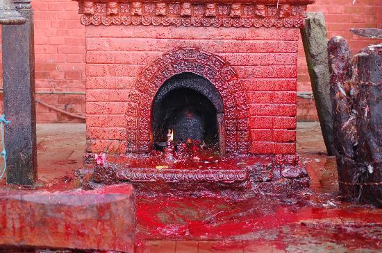 Manakamana Temple: Lugar de sacrificios