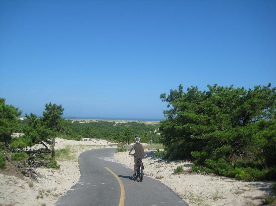 Race Point Beach: Bike Path to the Beach