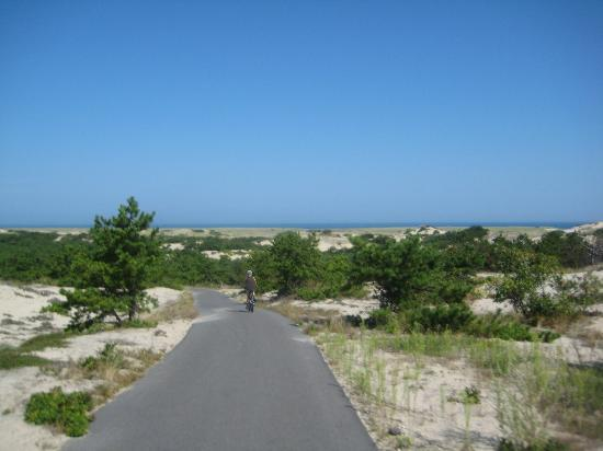 Race Point Beach: Bike Path on the Way to the Beach