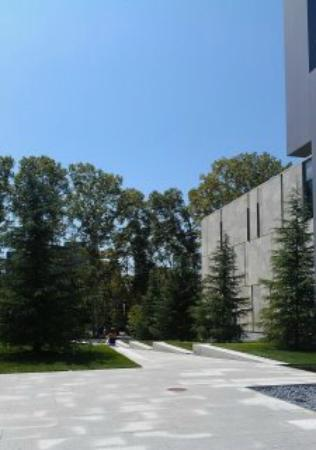 The Barnes Foundation: garden area