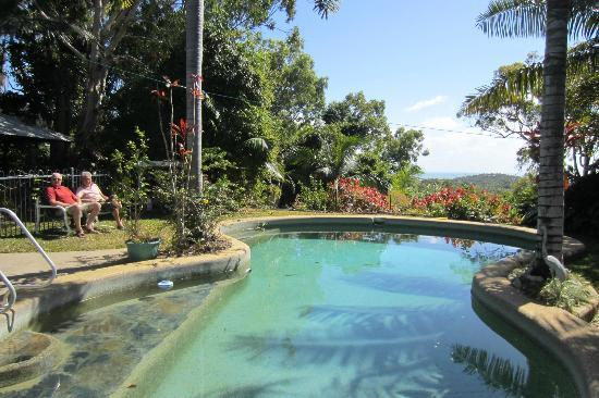 Coral Sea Retreat Bed and Breakfast: The pool