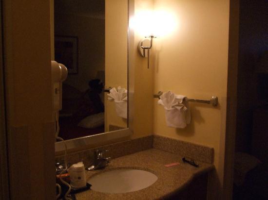 โรงแรมเบสเวสเทิร์นพลัสออลันโดเกตเวย์: Wash Basin in room