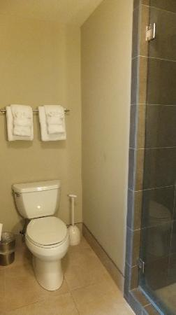 Bluegreen Vacations Studio Homes at Ellis Square, an Ascend Resort Collection: Bathroom1