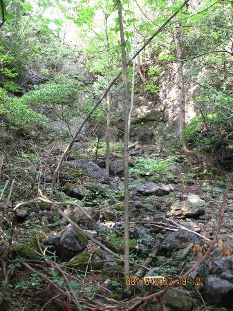Rockwood Conservation Area: behind the caves