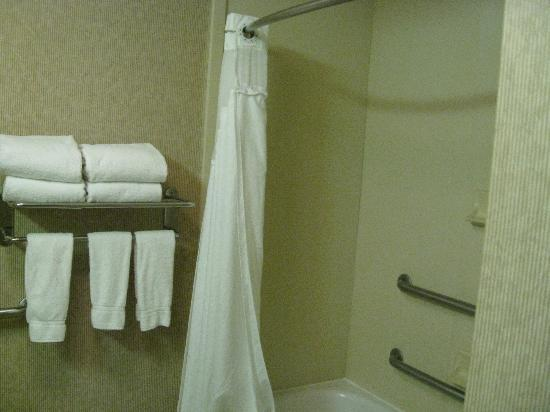 Holiday Inn Express Memphis Southwind : bathroom