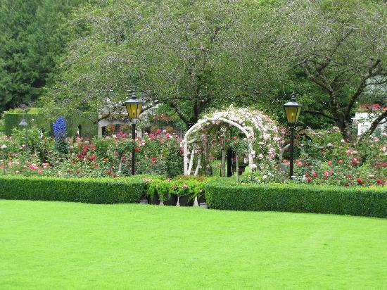The Butchart Gardens: Rose Garden (view during Tea Time)