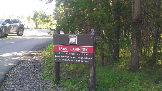 At the entrance to Bridge Bay Campground