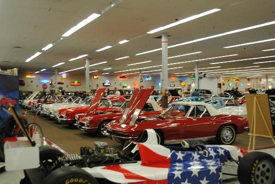 Muscle Car City Museum: Rows of great cars.