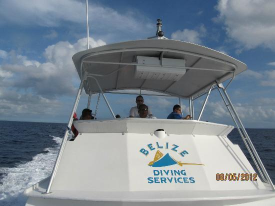 Belize Diving Services: Their Newton 42 dive boat- I was very impressed!