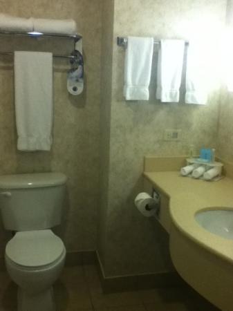 Holiday Inn Express Suites Gananoque: clean large bathroom