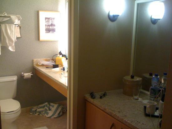 Hilton Denver Inverness: Smallest bathroom at supposedly 4-diamond hotel