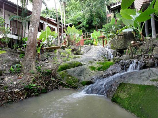 Nature Park Resort: The atmosphere in the resort.