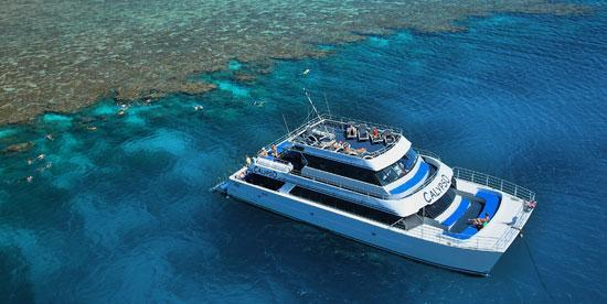 Calypso Reef Cruises : Mored at Opal Reef