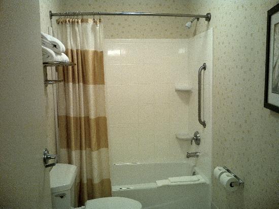 SpringHill Suites Laredo: Shower