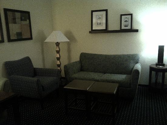 SpringHill Suites Laredo: living area