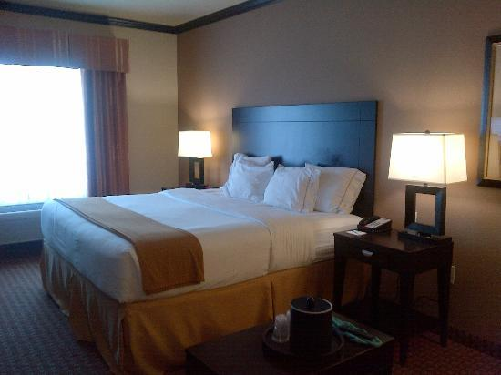 Holiday Inn Express & Suites Corpus Christi: king bed