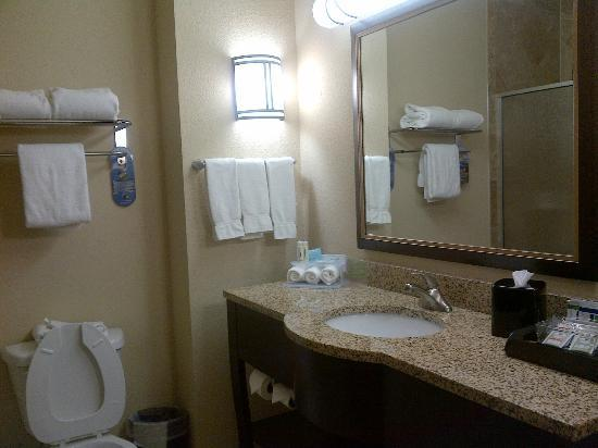 Holiday Inn Express & Suites Corpus Christi: bathroom