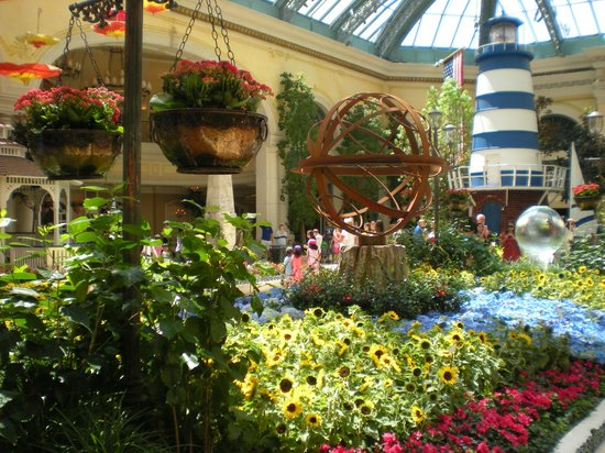 Thourghtfully Arranged Flower And Plants Picture Of Conservatory Botanical Gardens At