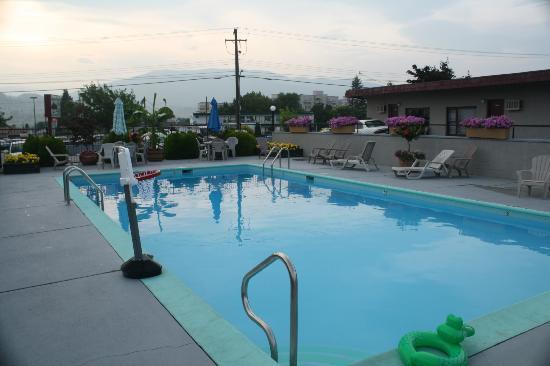 آبل تري إن: Pool 