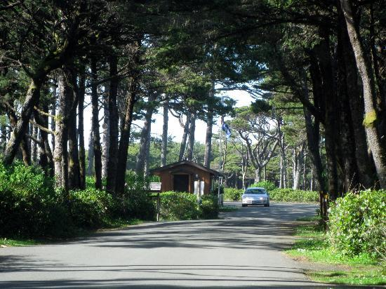 Photo of Beachside State Park Waldport