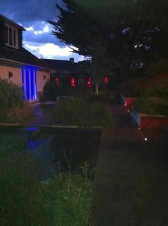 The White House Bed & Breakfast: garden at night