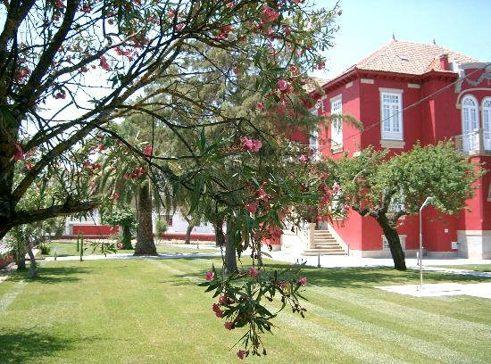 Casa Vermelha: A Casa