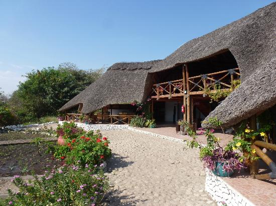 Manyara Wildlife Safari Camp: Vue de