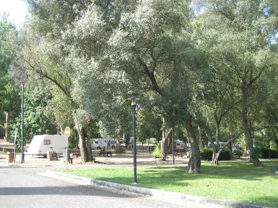 Lisboa Camping & Bungalows: areal