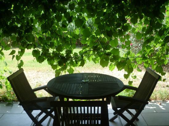 Le Mas Des Sables : Une terrasse ds les vignes !