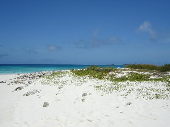 Isla de Carenero - Los Roques Image