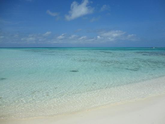 Isla de Carenero - Los Roques: ...spettacolo davanti ai vostri occhi