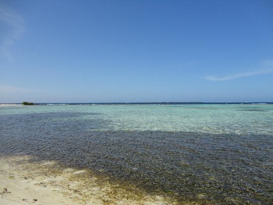 Isla de Carenero - Los Roques : altra laguna interna