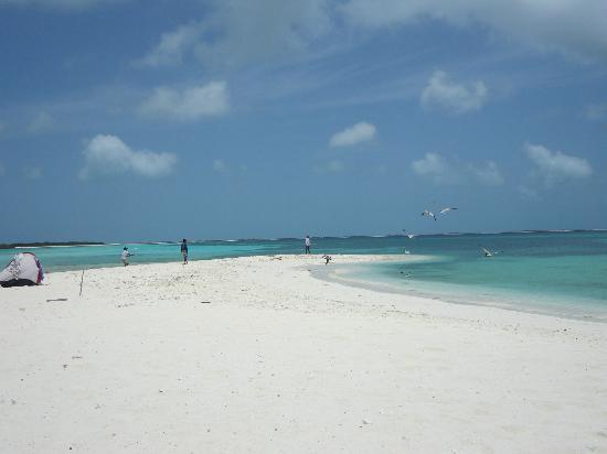 Isla de Carenero - Los Roques : ....splendida Carenero !!
