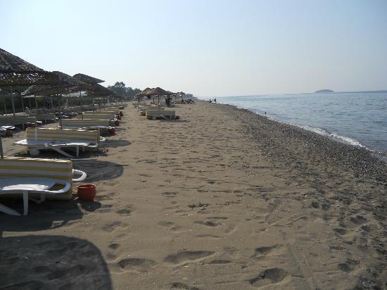 Paradise Friends Yali Hotel & Resort: spiaggia+lettini