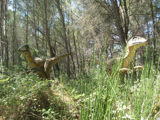 Musee - Parc des Dinosaures : ...