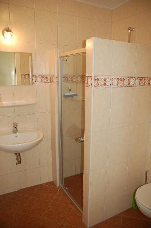 Goudriaan, Нидерланды: Badkamer met docuhe en wc op iedere kamer