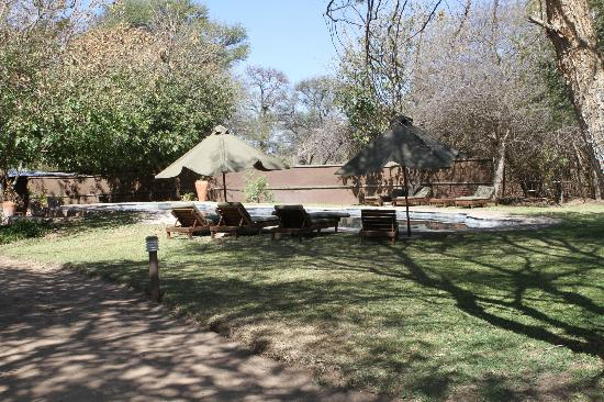 Elephant Valley Lodge: View of the swimming pool and grounds