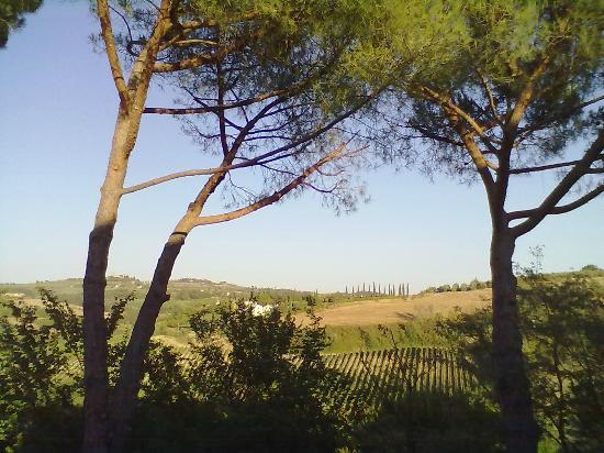 Le Mandrie di Ripalta: Panorama dalla terrazza della camera