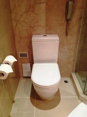 The T Hotel: トイレはいたって普通です