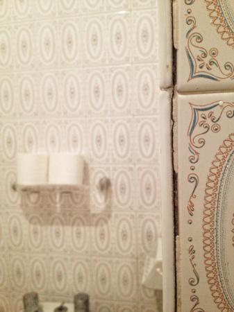Hotel Las Piramides: Escondites para gérmenes en el baño al lado del water