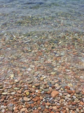 Hotel Miramare: El agua de la playa es transparente y limpia