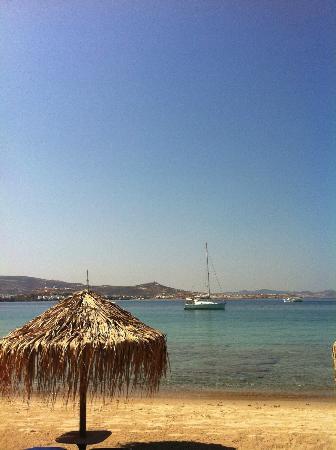 Arokaria Beach Studios: The beach in front of the villas