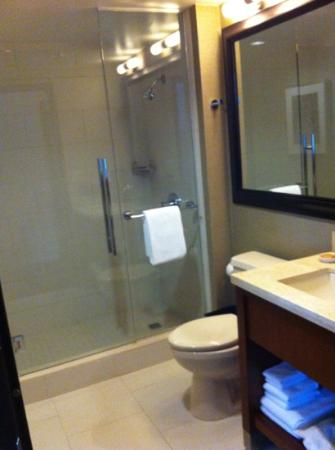Hyatt Regency Sacramento: Bathroom, shower only