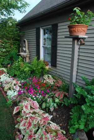 Annville Inn: garden
