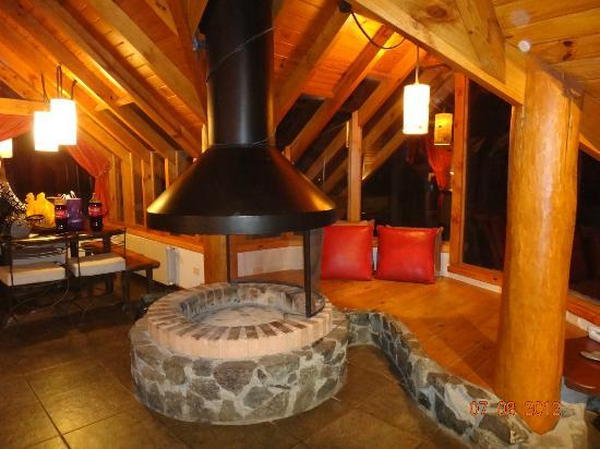 Punta Manzano : living