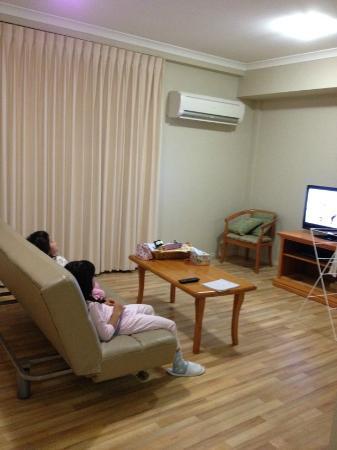 Mont Clare Boutique Apartments: リビングルーム...ちなみにこのソファがベッドになるみたいです