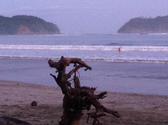 Casitas LazDivaz: La plage et ses échouris