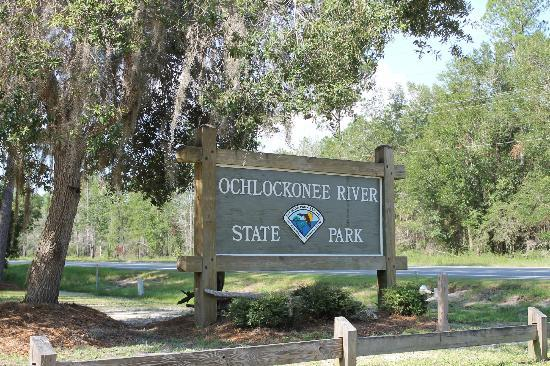 Sopchoppy, FL: Ochlockonee River State Park photo by Beverly Hill