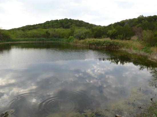 Cedar Ridge Preserve Managed By Audubon Dallas 2018 All